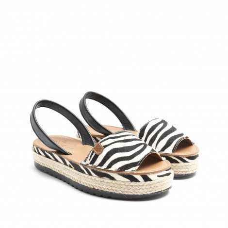 Zebra Abarque